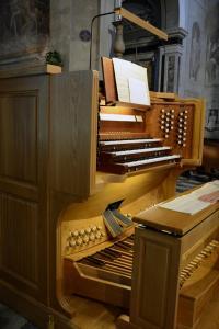 EMA 0898 organo
